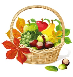 Basket with autumn fruit and vegetables vector image