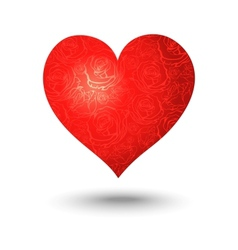 heart on a white background vector image