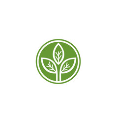 green leaf leaves logo vector image