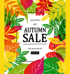 hot autumn sale advertisement banner vector image