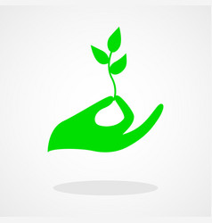 icon a hand holding a young plant vector image