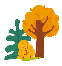 landscape trees and bushes autumn forest view vector image