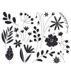 Silhouettes leaves and flowers vector