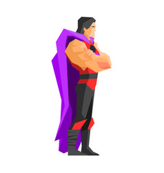 superhero profile vector image
