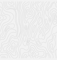 Topographic contour in lines and contours vector
