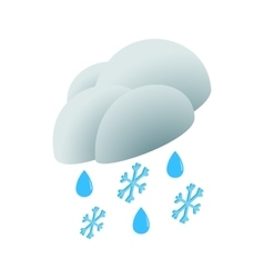 Cloud with rain drops and snowflakes icon vector image
