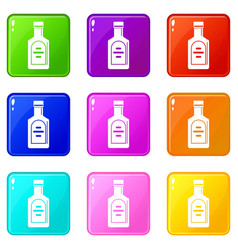 bottle of whiskey set 9 vector image vector image