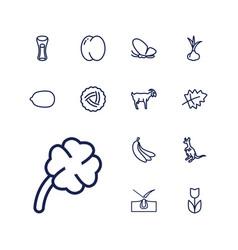 13 natural icons vector