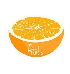 A lot of juicy oranges vector