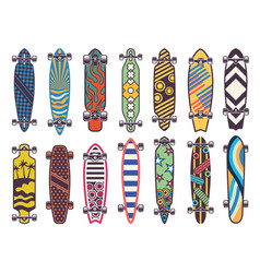 colored on skateboards vector image
