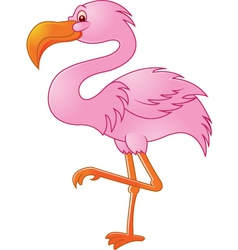 flamingo bird vector image vector image