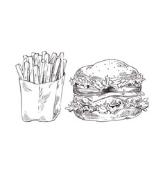 french fries and hamburger vector image