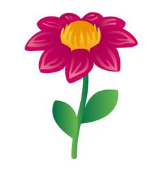 Honey flower icon isometric style vector