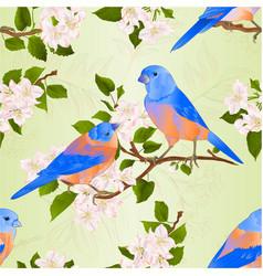 Seamless texture bluebirds thrush vector