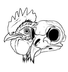 Skull rooster head realistic vector