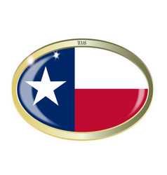 texas state flag oval button vector image