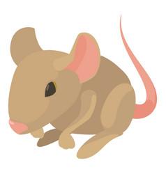 rat icon cartoon style vector image