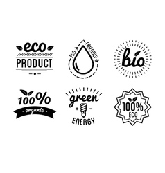 Set of labels and elements for green vector image vector image