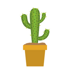 white background with cactus of three branch in vector image vector image
