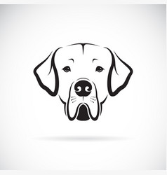 Dreat dane dog head on white background pet vector