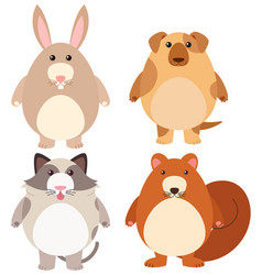 four types of cute pets vector image