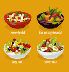 greek salad mozzarella lettuce summer dish vector image