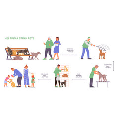 helping stray pets flowchart vector image