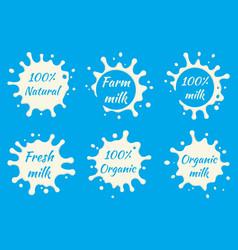 milk labels set splash and blot vector image