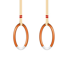 Wooden gymnastic rings vector