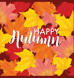 colorful card or banner with autumn leaves vector image vector image