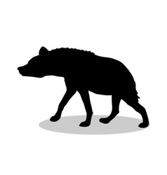 hyena predator black silhouette animal vector image