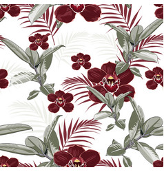 burgundy orchids exotic ficus and tropical palm vector image