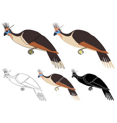 Cigana bird in profile view vector
