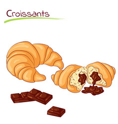Croissants with chocolate vector