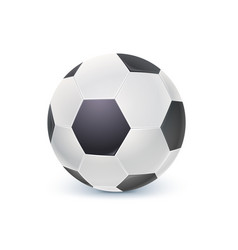 detailed icon of ball for game in classic football vector image