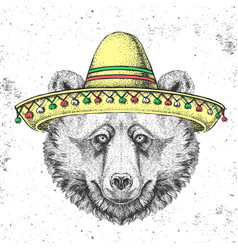 hipster animal bear wearing a sombrero hat vector image