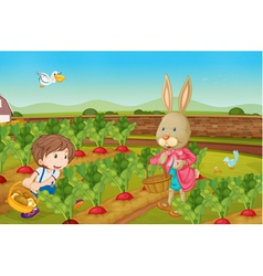Rabbit picking veggies vector image