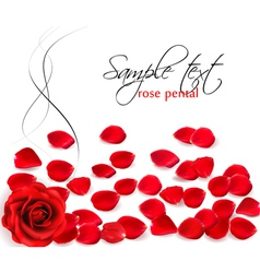 background of red rose petals vector image