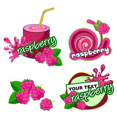 raspberry label background vector image vector image