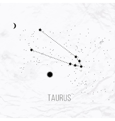 Astrology sign Taurus on white paper background vector