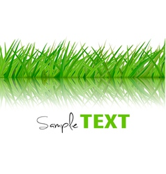 Background with green grass vector