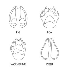 design foot and footprint sign vector image