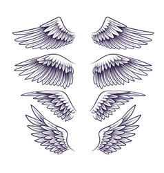 Hand drawn wing sketch angel wings with vector