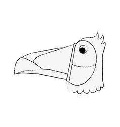 Tucan bird head vector