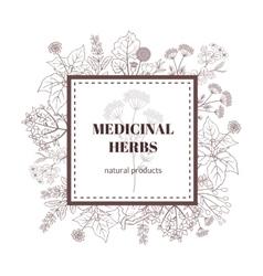Medicine plant decorative background vector image vector image