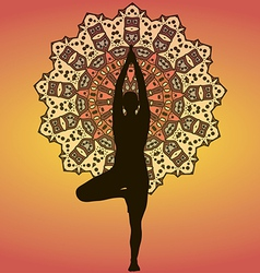 Yogi vector image