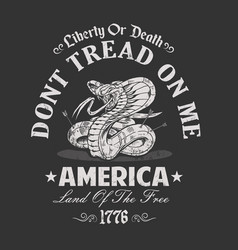 America dont tread on me vector