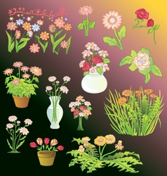 Assortment of Flowers vector