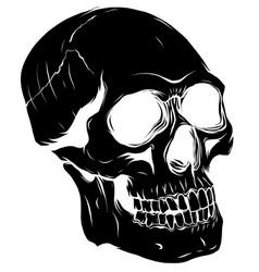 black silhouette a human skull vector image