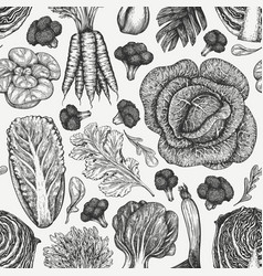 hand drawn sketch vegetables organic fresh food vector image